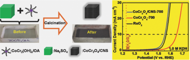 115.Strongly Coupled CoCr2O4/Carbon Nanosheets as High Performance Electrocatalysts for Oxygen Evolution Reaction