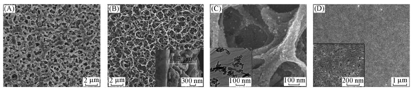 42.Preparation and potocatalytic property of porous TiO2 film with net-like framework